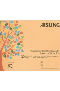Aisling Learn to Write B2 (Pack of 20)