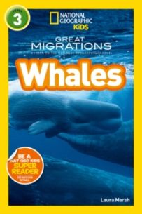 National Geographic Kids Readers: Whales (Level 3)
