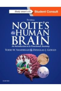 Nolte's The Human Brain : An Introduction to its Functional Anatomy (7th Revised Ed)