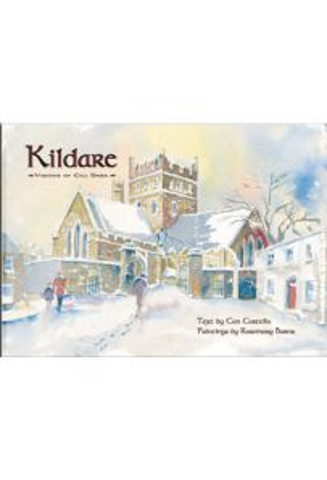 Kildare Visions of Cill Dara