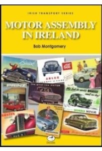 Motor Assembly In Ireland