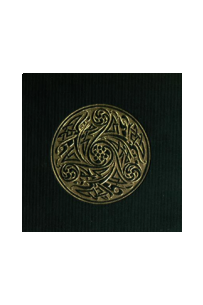 Irish Texts Society Subsidiary Series Volume 32: Táin Bó Cúalnge from the Book of Leinster: Reassessments