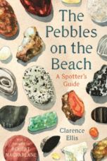 The Pebbles on the Beach : A Spotter's Guide
