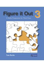 Figure It Out 3 (3rd Class)