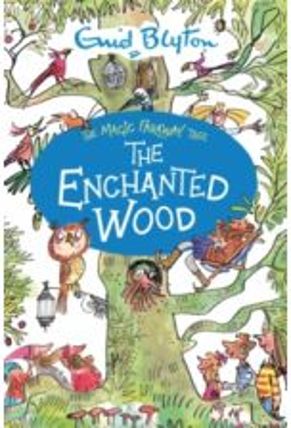 The Magic Faraway Tree: The Enchanted Wood : Book 1