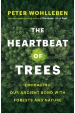 The Heartbeat of Trees : Embracing Our Ancient Bond with Forests and Nature