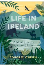 Life in Ireland: A Short History of a Long Time