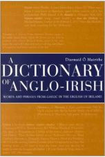 Dictionary of Anglo-Irish: Words and Phrases from Gaelic In the English of Ireland