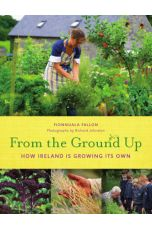 From The Ground Up: How Ireland is Growing Its Own